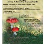 3 aprile funghi