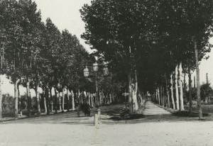 Mirandola-Viale-Gramsci