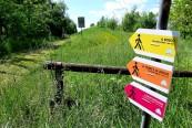 Mirandola_percorsi_nordic_walking1